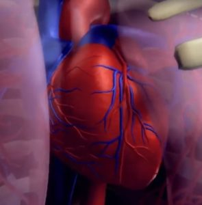 heart attack vitamin b12